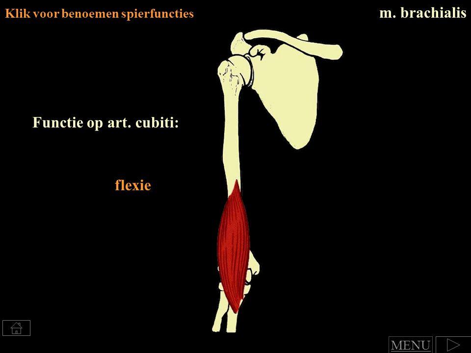 Klik voor benoemen spierfuncties m. brachialis Functie op art. cubiti: flexie MENU
