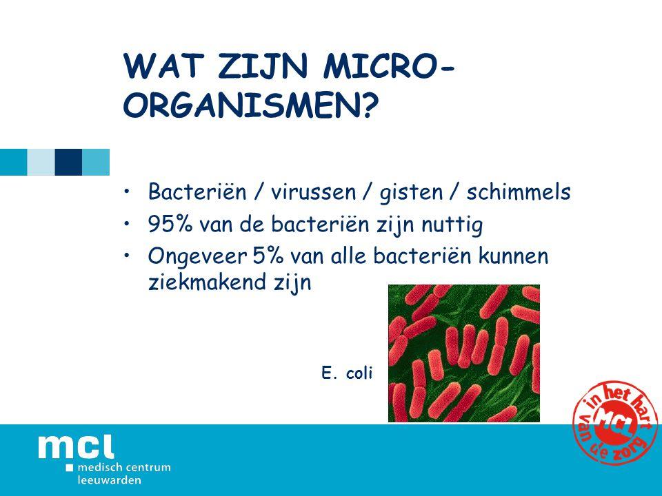 WAT ZIJN MICRO- ORGANISMEN? Bacteriën / virussen / gisten / schimmels 95% van de bacteriën zijn nuttig Ongeveer 5% van alle bacteriën kunnen ziekmaken