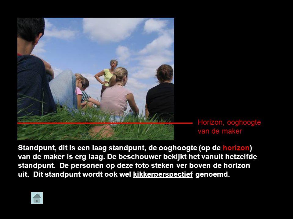 René Akkerman Standpunt, dit is een laag standpunt, de ooghoogte (op de horizon) van de maker is erg laag.
