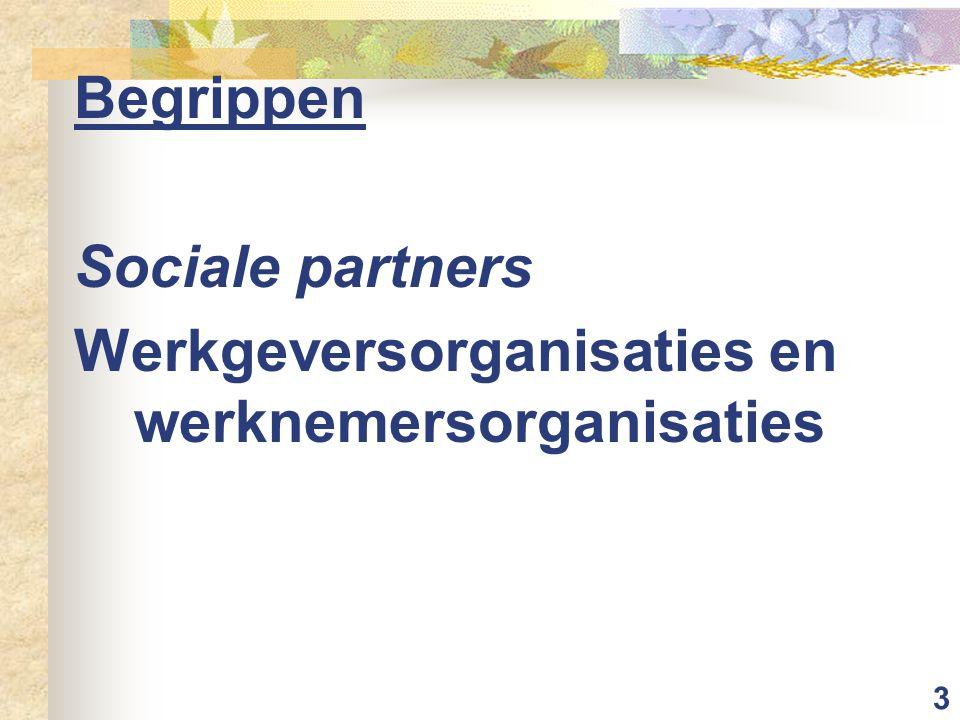 3 Begrippen Sociale partners Werkgeversorganisaties en werknemersorganisaties