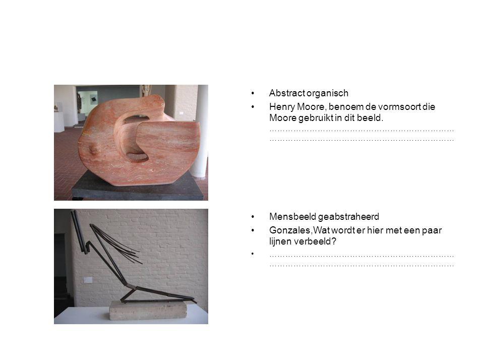 Abstract organisch Henry Moore, benoem de vormsoort die Moore gebruikt in dit beeld.