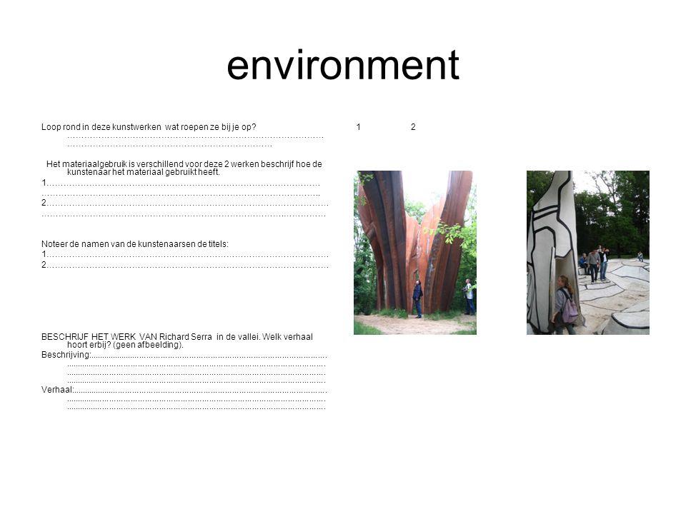environment Loop rond in deze kunstwerken wat roepen ze bij je op? ……………………………………………………………………………… ……………………………………………………………… Het materiaalgebruik is ver
