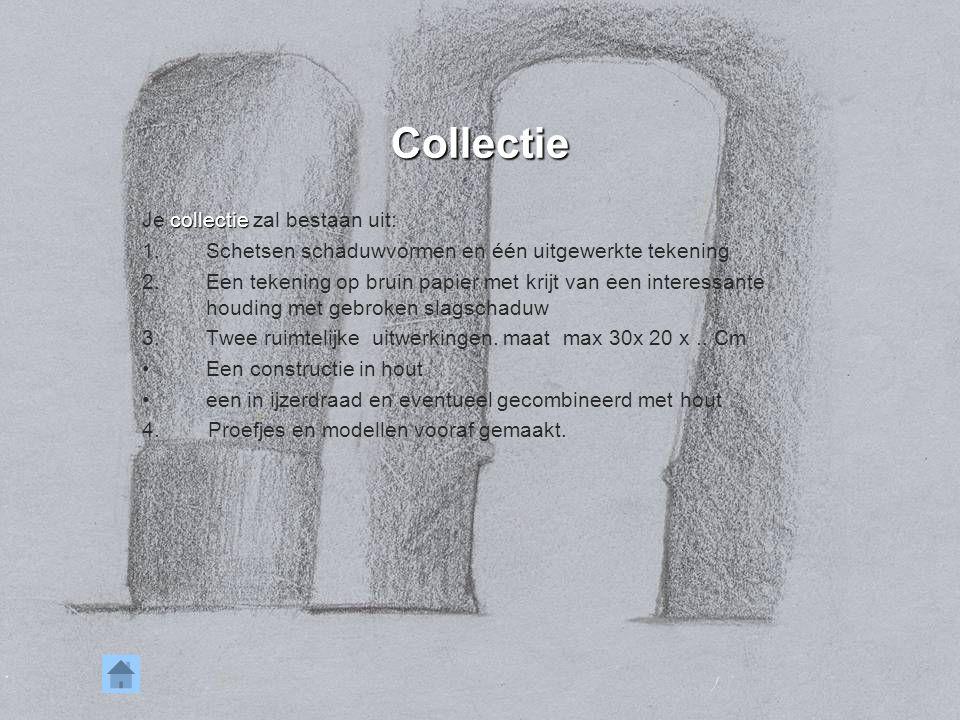 Collectie collectie Je collectie zal bestaan uit: 1.Schetsen schaduwvormen en één uitgewerkte tekening 2.Een tekening op bruin papier met krijt van ee