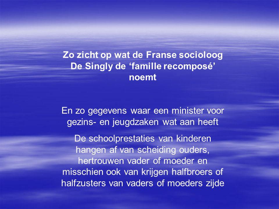 Zo zicht op wat de Franse socioloog De Singly de 'famille recomposé' noemt En zo gegevens waar een minister voor gezins- en jeugdzaken wat aan heeft D