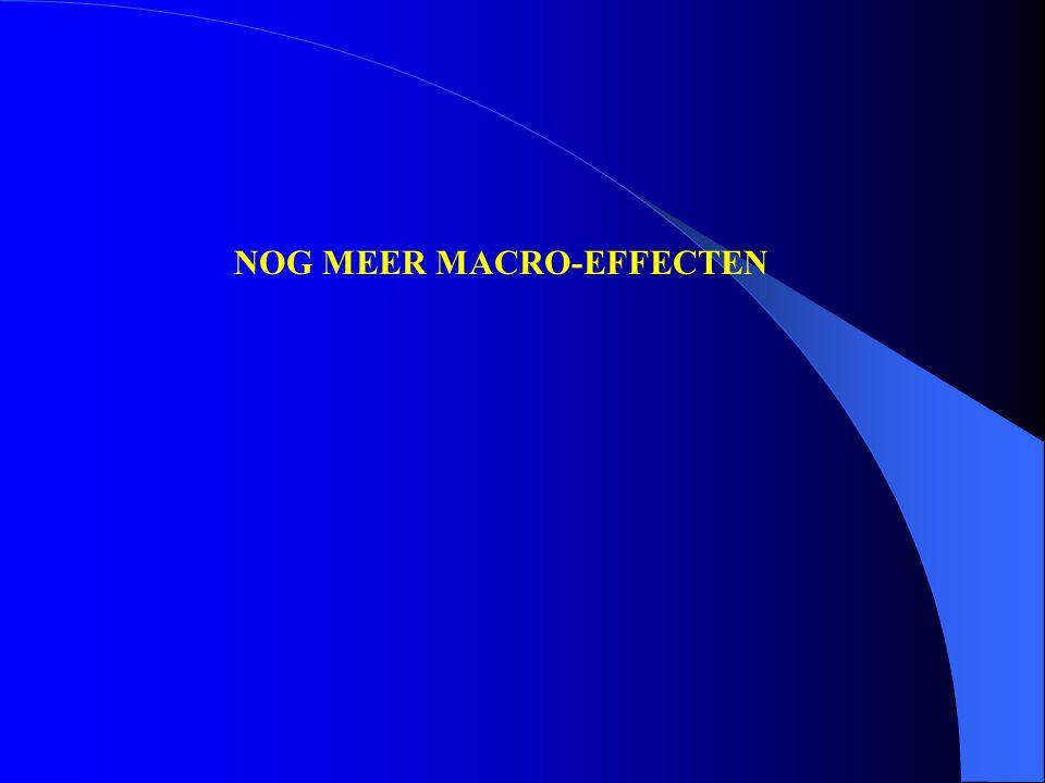 NOG MEER MACRO-EFFECTEN