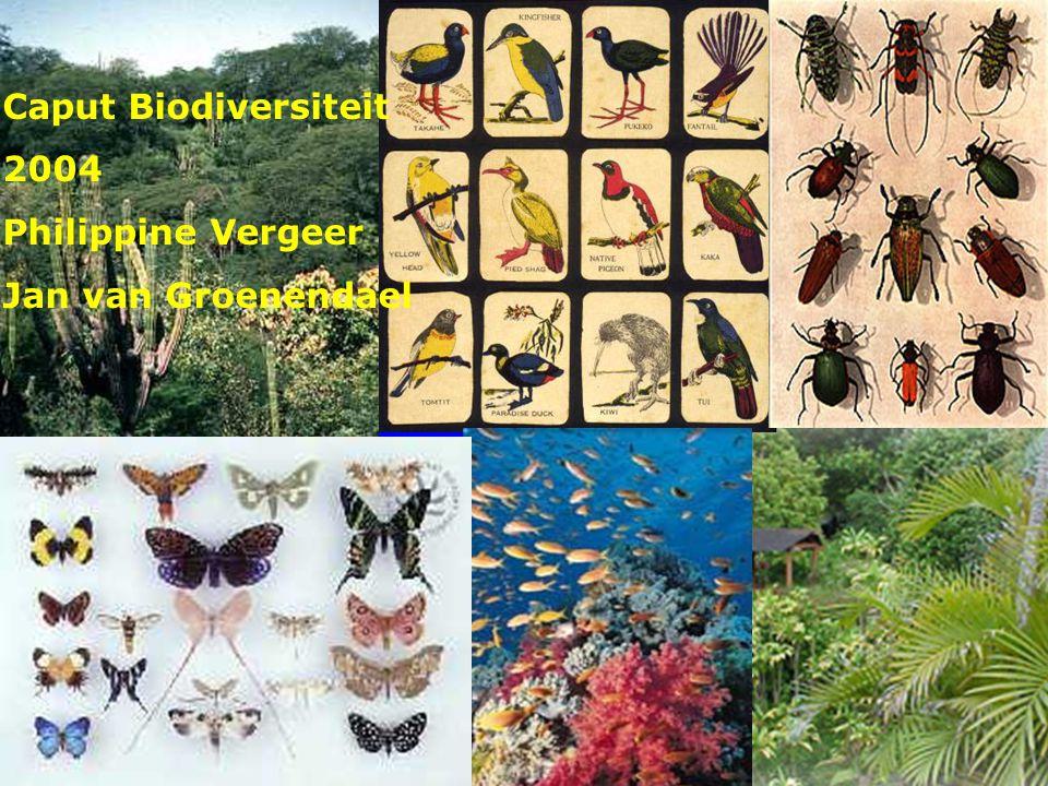 Caput biodiversiteit colleges 5+6 De paradox van biodiversiteit