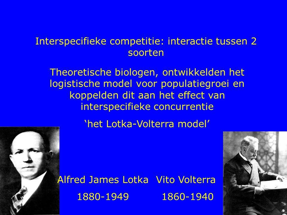 Interspecifieke competitie: interactie tussen 2 soorten Theoretische biologen, ontwikkelden het logistische model voor populatiegroei en koppelden dit
