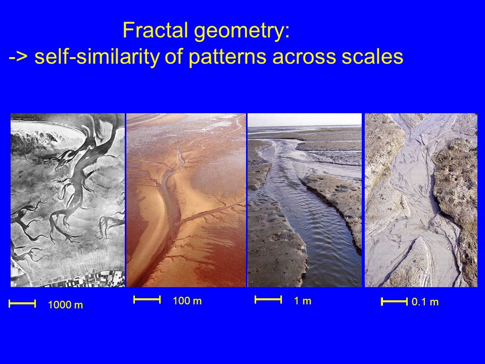 0.1 m 1 m100 m 1000 m Fractal geometry: -> self-similarity of patterns across scales