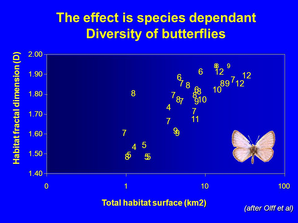 The effect is species dependant Diversity of butterflies 8 9 9 10 11 8 12 7 5 6 7 6 106 7 9 9 12 8 5 9 7 5 8 4 5 4 7 7 8 8 7 8 8 8 1.40 1.50 1.60 1.70