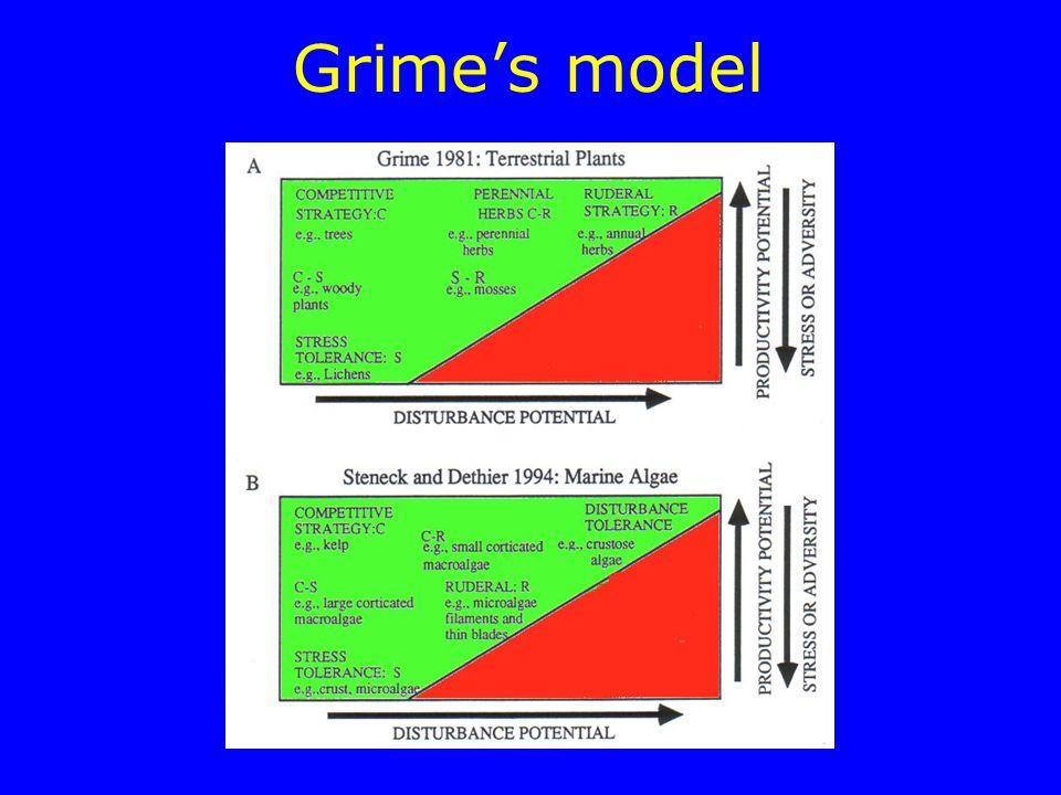 Grime's model