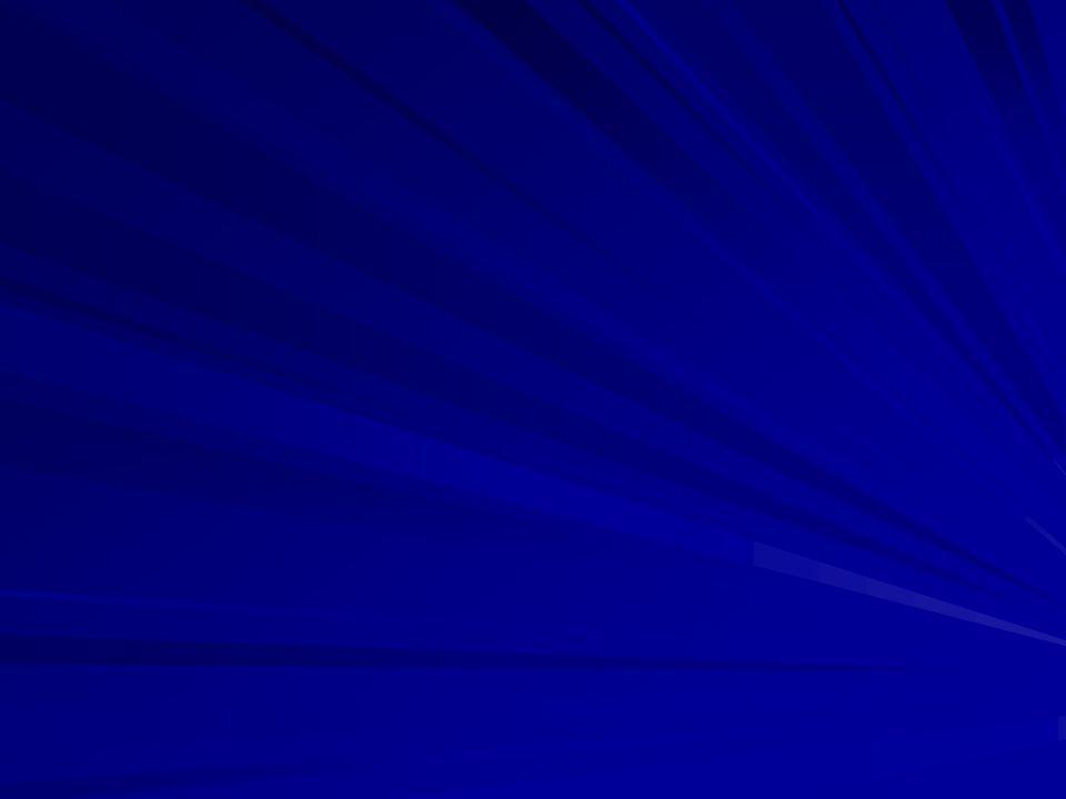DE VRAAG WAAR DE EERSTE DRIE HOOFDTUKKEN VAN LAMMERS' BOEK OM DRAAIDE: WAAROM WAS DE DUITSE BEZETTING VAN NEDERLAND VOOR DE BEZETTER SUCCESVOLLER EN VOOR DE INWONERS MINDER DRAGELIJK DAN DE DUITSE BEZETTING VAN BELGIË, FRANKRIJK EN DENEMARKEN.