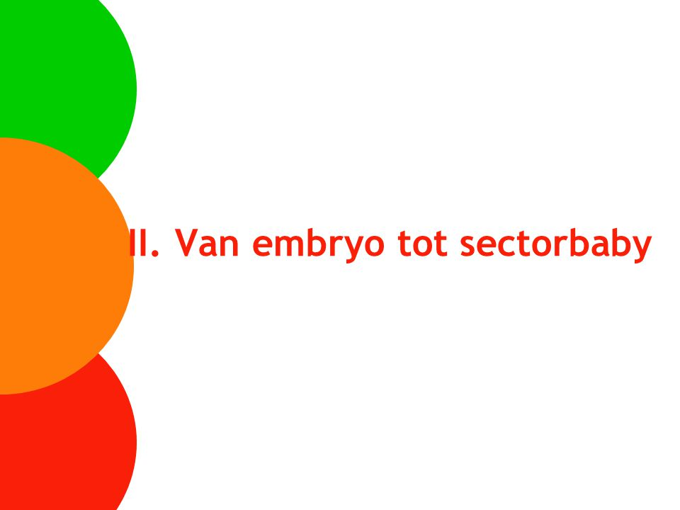 II. Van embryo tot sectorbaby