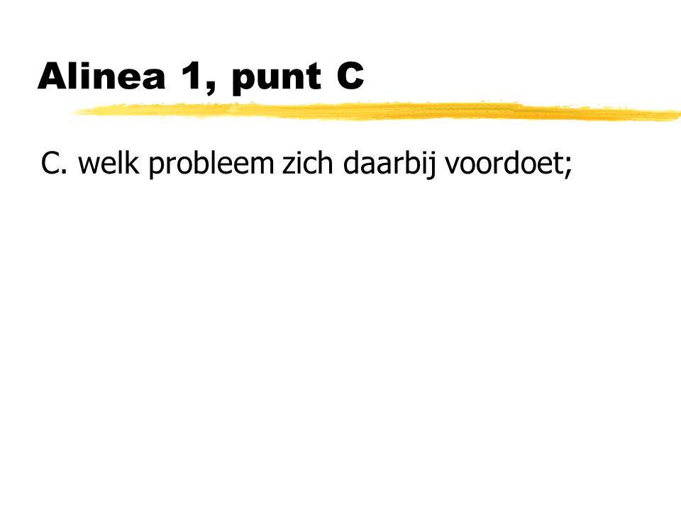 Alinea 1, punt C C. welk probleem zich daarbij voordoet;