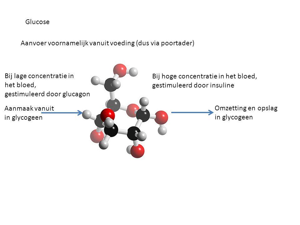 Glucose Aanvoer voornamelijk vanuit voeding (dus via poortader) Omzetting en opslag in glycogeen Bij hoge concentratie in het bloed, gestimuleerd door