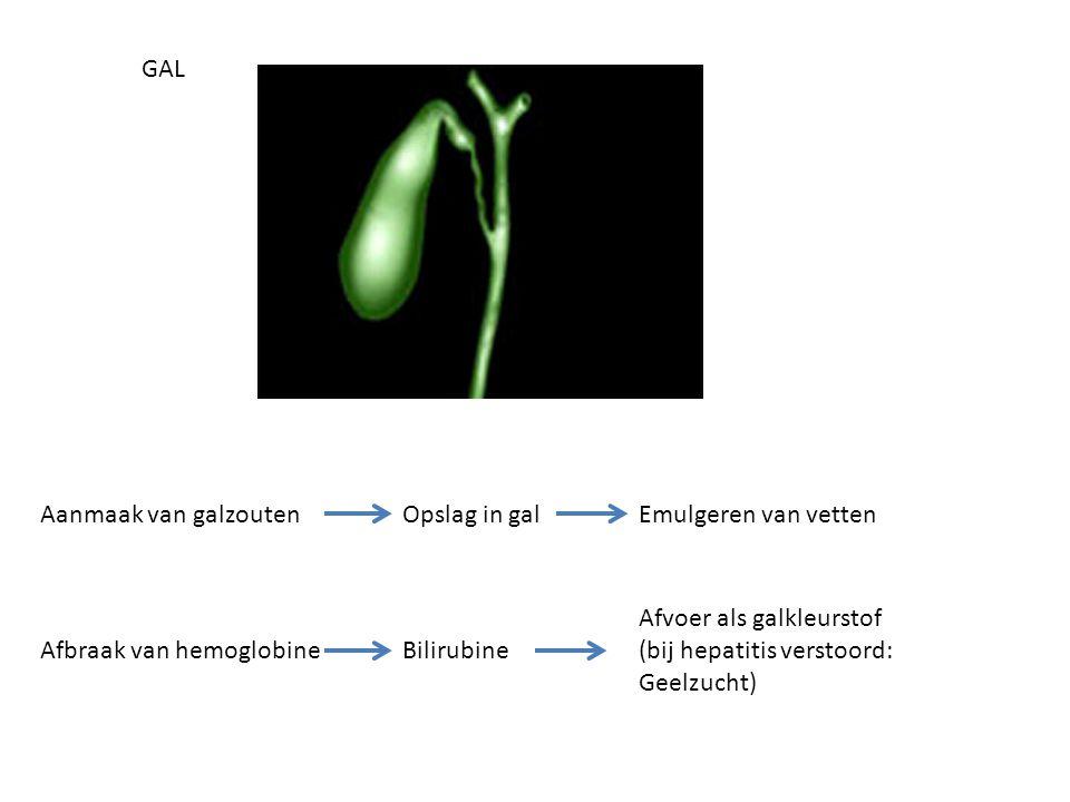 Bilirubine Afvoer als galkleurstof (bij hepatitis verstoord: Geelzucht) Afbraak van hemoglobine GAL Opslag in galEmulgeren van vettenAanmaak van galzo