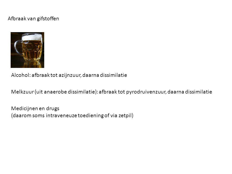 Alcohol: afbraak tot azijnzuur, daarna dissimilatie Afbraak van gifstoffen Melkzuur (uit anaerobe dissimilatie): afbraak tot pyrodruivenzuur, daarna d