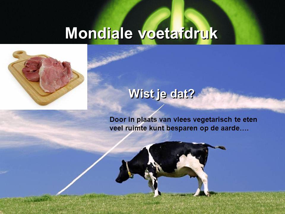 Mondiale voetafdruk Door in plaats van vlees vegetarisch te eten veel ruimte kunt besparen op de aarde…. Wist je dat?