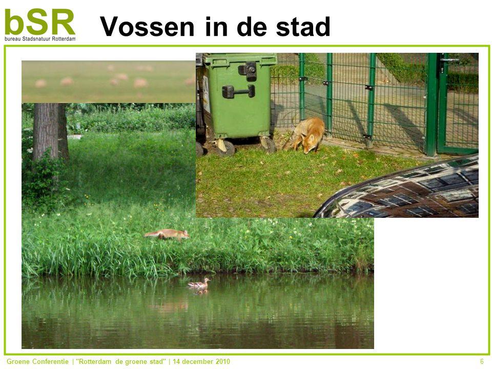 Groene Conferentie | Rotterdam de groene stad | 14 december 20106 Vossen in de stad