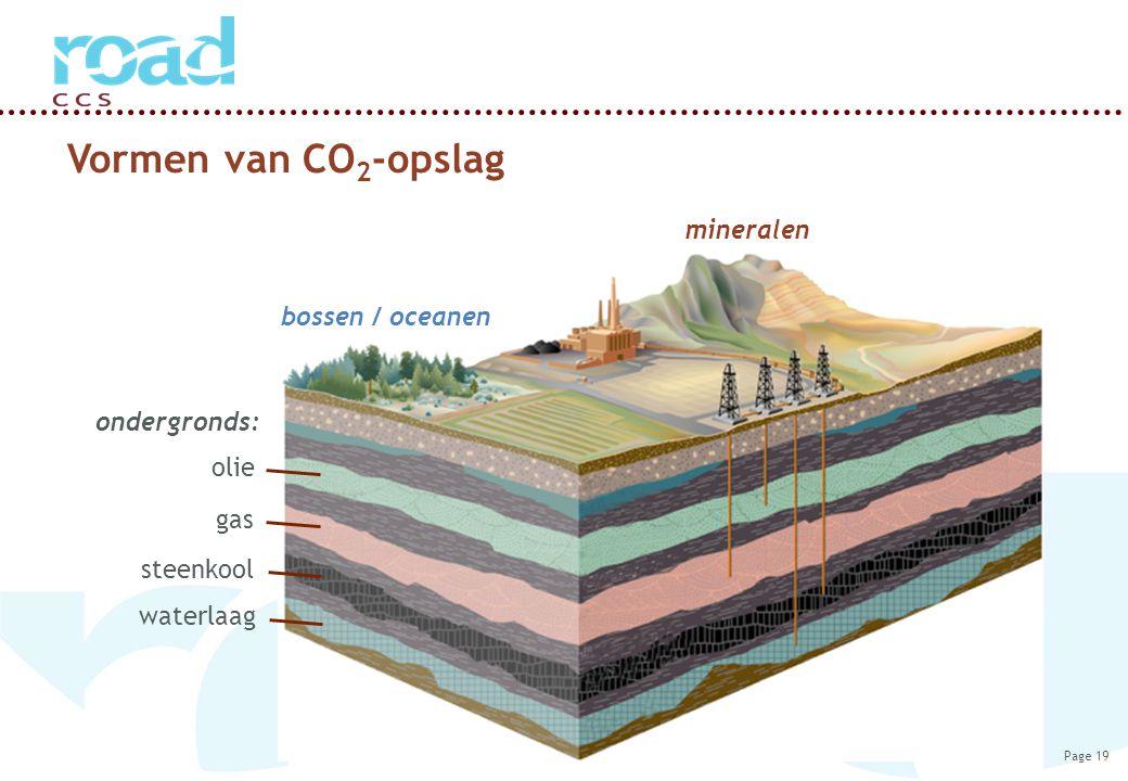 Page 19 Vormen van CO 2 -opslag bossen / oceanen ondergronds: mineralen olie gas steenkool waterlaag