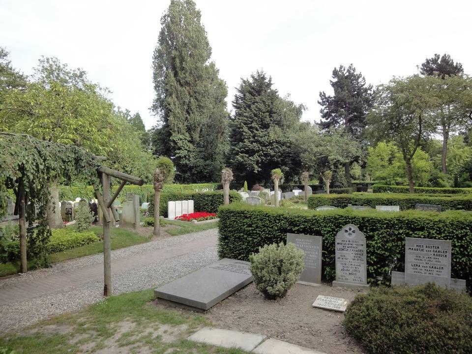 UITBREIDING WESTZIJDE VOORDELEN Efficiënt ruimtegebruik: het bosgebied heeft nu geen recreatieve functie en is nu alleen kijkgroen Interne structuur van de begraafplaats verbetert Ligt goed ten opzichte van de Aula en de Uytvaert Aantrekkelijker groen teruggeplant Programma past NADELEN Huidige bosgebied verdwijnt: herplant maar beperkt mogelijk (33 van de ongeveer 50 bomen) Zicht van flat op de begraafplaats (tijdelijk) Singel verlegd dus bestemmingsplanwijziging: half jaar proceduretijd