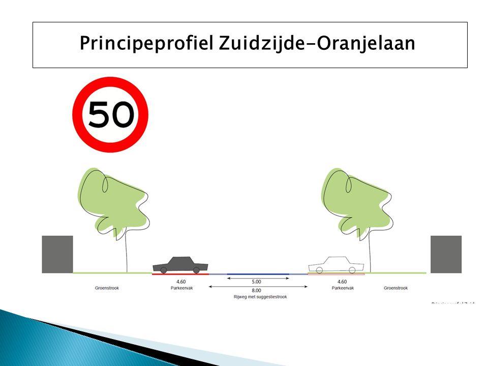 Principeprofiel Zuidzijde-Oranjelaan