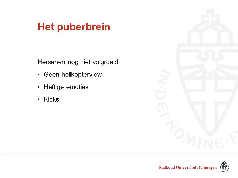 Het puberbrein Hersenen nog niet volgroeid: Geen helikopterview Heftige emoties Kicks (bron: Puberbrein binnenstebuiten)