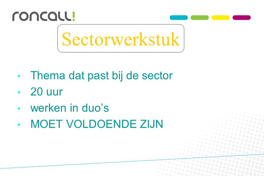 Sectorwerkstuk Thema dat past bij de sector 20 uur werken in duo's MOET VOLDOENDE ZIJN