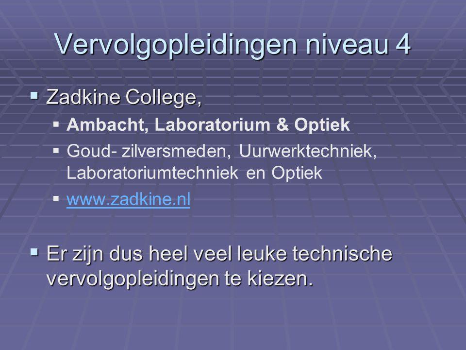 Vervolgopleidingen niveau 4  Zadkine College,   Ambacht, Laboratorium & Optiek   Goud- zilversmeden, Uurwerktechniek, Laboratoriumtechniek en Opt