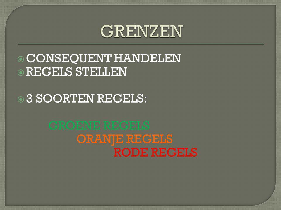  CONSEQUENT HANDELEN  REGELS STELLEN  3 SOORTEN REGELS: GROENE REGELS ORANJE REGELS RODE REGELS