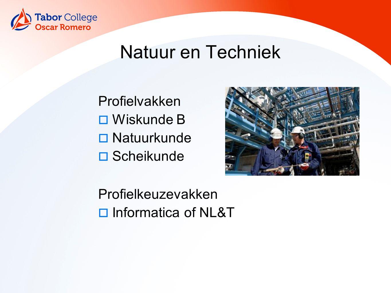 12 Natuur en Techniek Profielvakken  Wiskunde B  Natuurkunde  Scheikunde Profielkeuzevakken  Informatica of NL&T