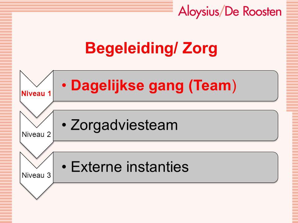 Niveau 1 Dagelijkse gang (Team) Niveau 2 Zorgadviesteam Niveau 3 Externe instanties Begeleiding/ Zorg