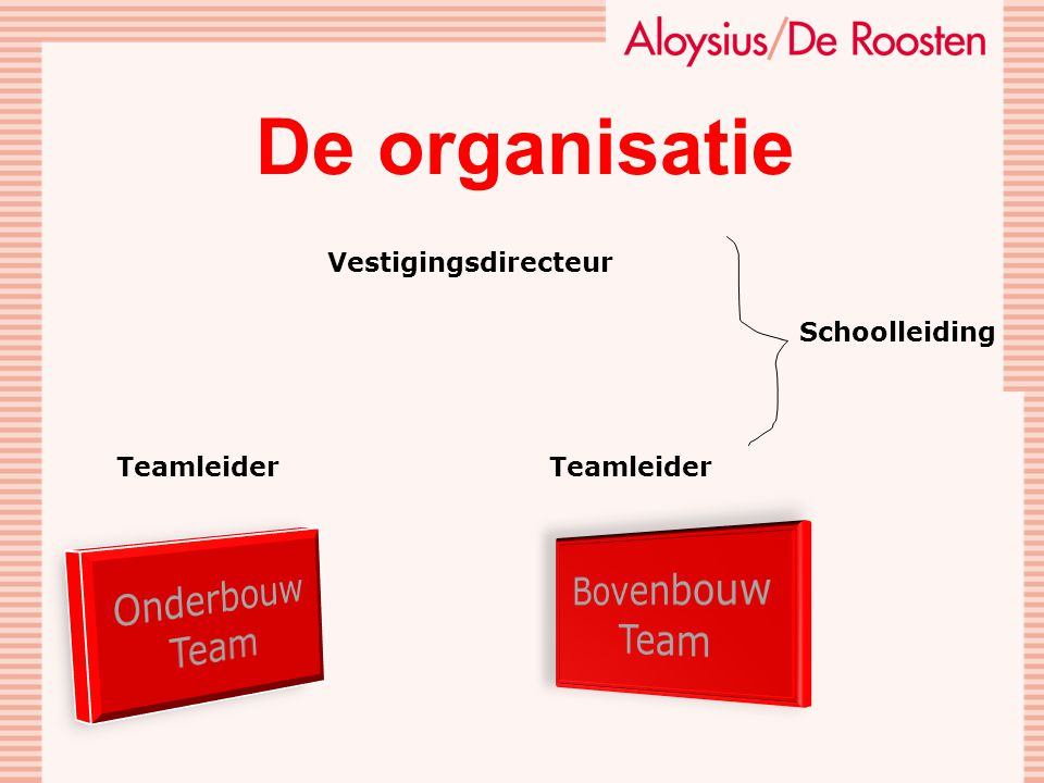 De organisatie Schoolleiding Teamleider Vestigingsdirecteur