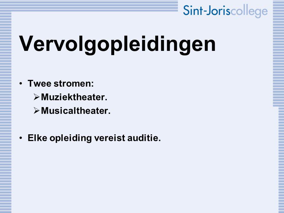 Muziektheater ( vaak gerelateerd aan Conservatorium) Zang en spel.