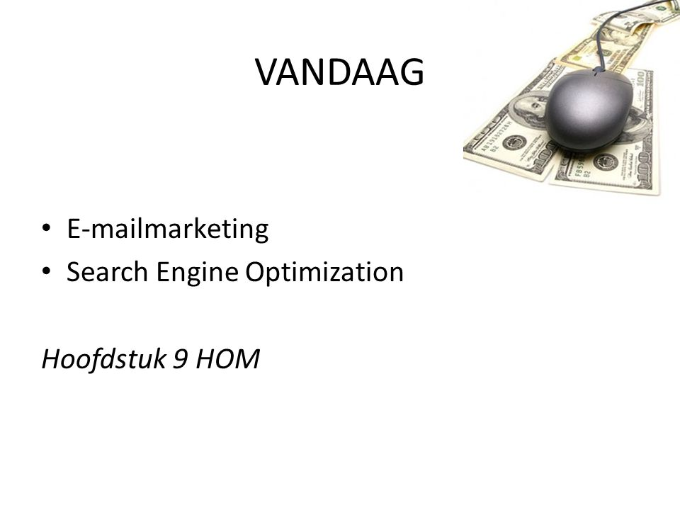 VANDAAG E-mailmarketing Search Engine Optimization Hoofdstuk 9 HOM
