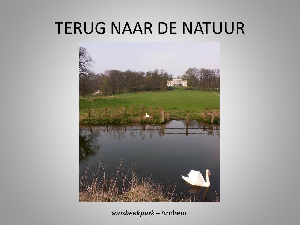 TERUG NAAR DE NATUUR Sonsbeekpark – Arnhem