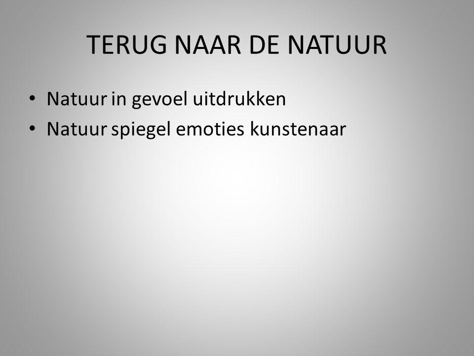 TERUG NAAR DE NATUUR Natuur in gevoel uitdrukken Natuur spiegel emoties kunstenaar