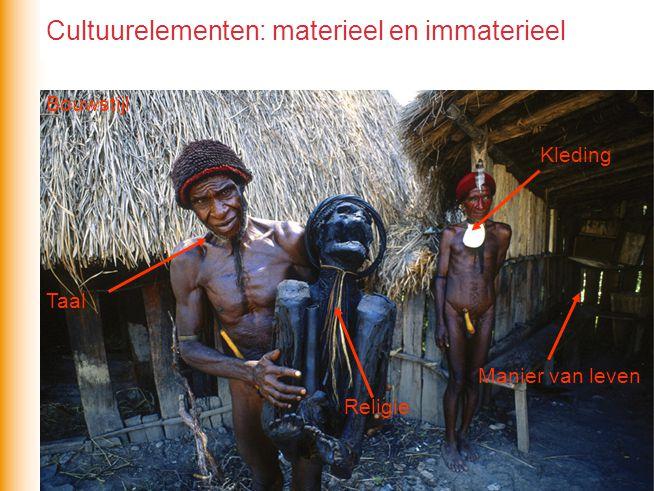 Cultuurelementen: materieel en immaterieel Bouwstijl Kleding Religie Taal Manier van leven
