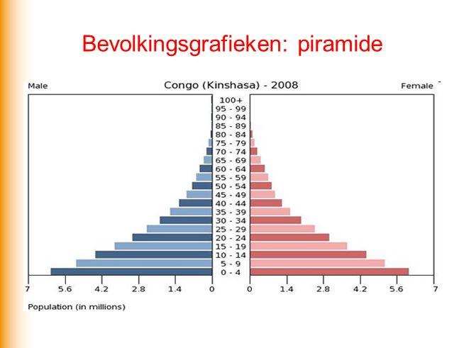 Bevolkingsgrafieken: piramide