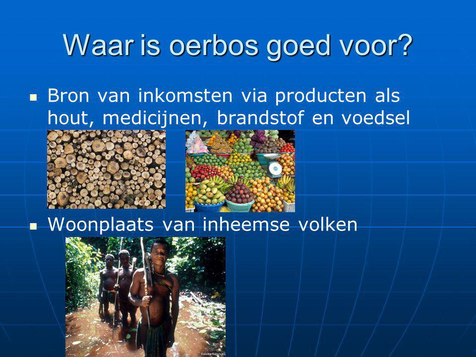 Waar is oerbos goed voor? Bron van inkomsten via producten als hout, medicijnen, brandstof en voedsel Woonplaats van inheemse volken