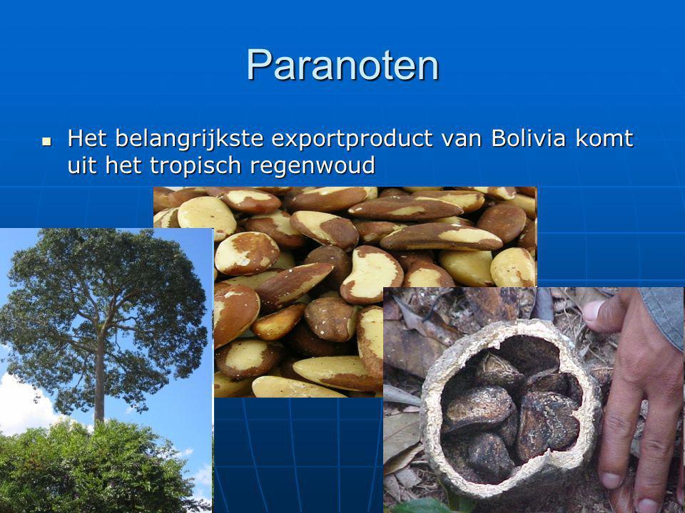Paranoten Het belangrijkste exportproduct van Bolivia komt uit het tropisch regenwoud Het belangrijkste exportproduct van Bolivia komt uit het tropisc