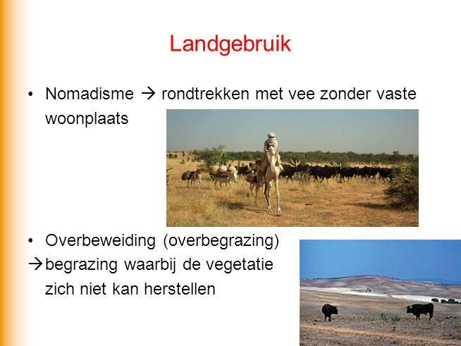 Landgebruik Oase  plek in de woestijn met toegang tot water Wadi  rivierdal dat het grootste deel van het jaar droog staat