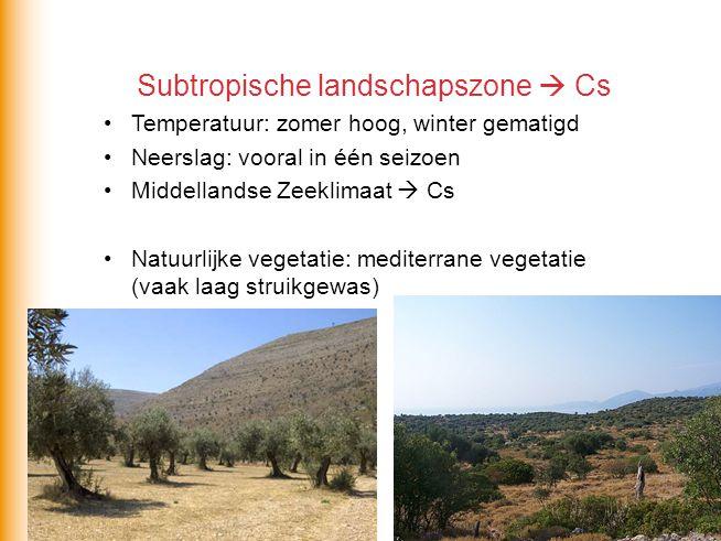 Subtropische landschapszone  Cs Temperatuur: zomer hoog, winter gematigd Neerslag: vooral in één seizoen Middellandse Zeeklimaat  Cs Natuurlijke veg