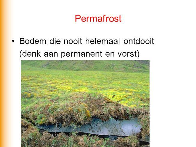 Permafrost Bodem die nooit helemaal ontdooit (denk aan permanent en vorst)
