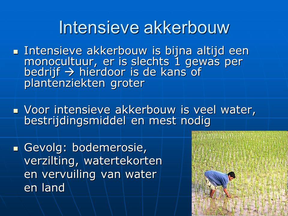 Intensieve akkerbouw Intensieve akkerbouw is bijna altijd een monocultuur, er is slechts 1 gewas per bedrijf  hierdoor is de kans of plantenziekten g