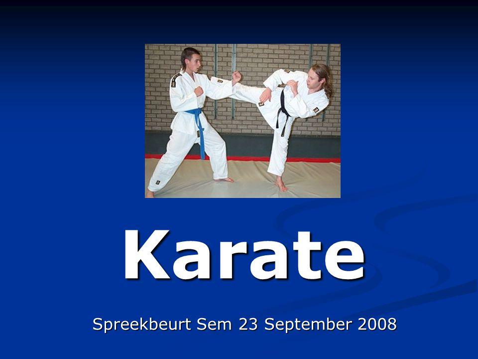 Wat ga ik vertellen.Wat betekend Karate en waar is het ontstaan.