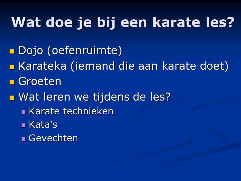 Wat doe je bij een karate les.