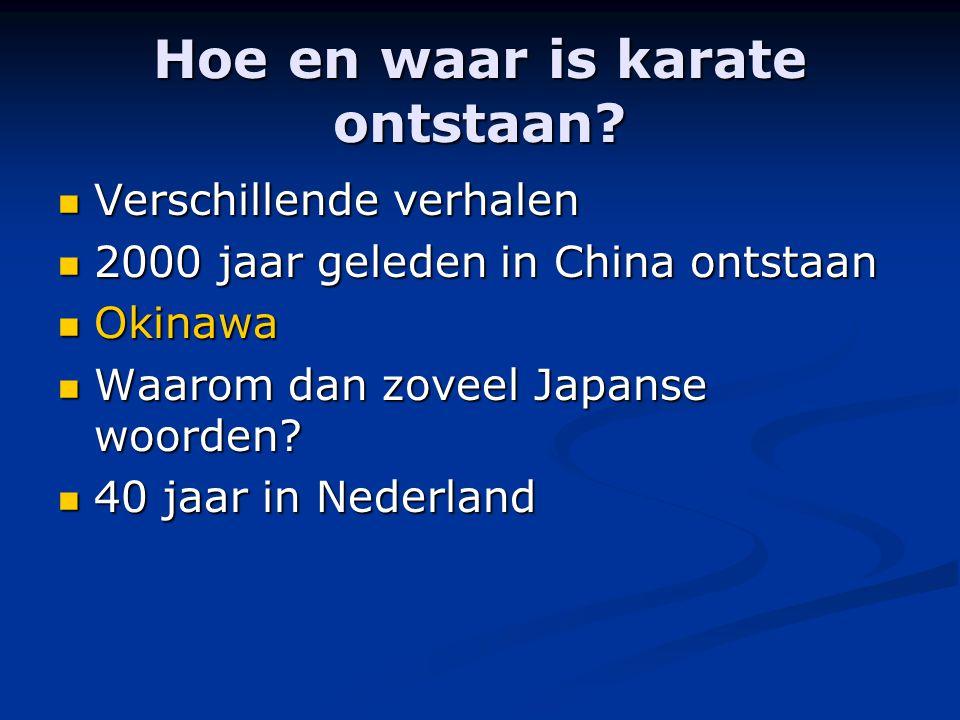 Wat heb je nodig om aan karate te kunnen doen.