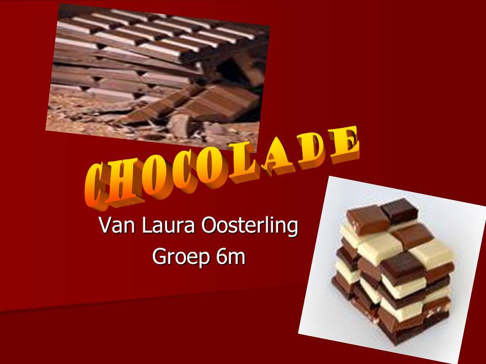 Van Laura Oosterling Groep 6m
