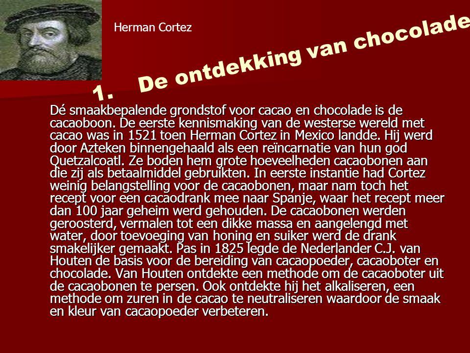 Dé smaakbepalende grondstof voor cacao en chocolade is de cacaoboon.