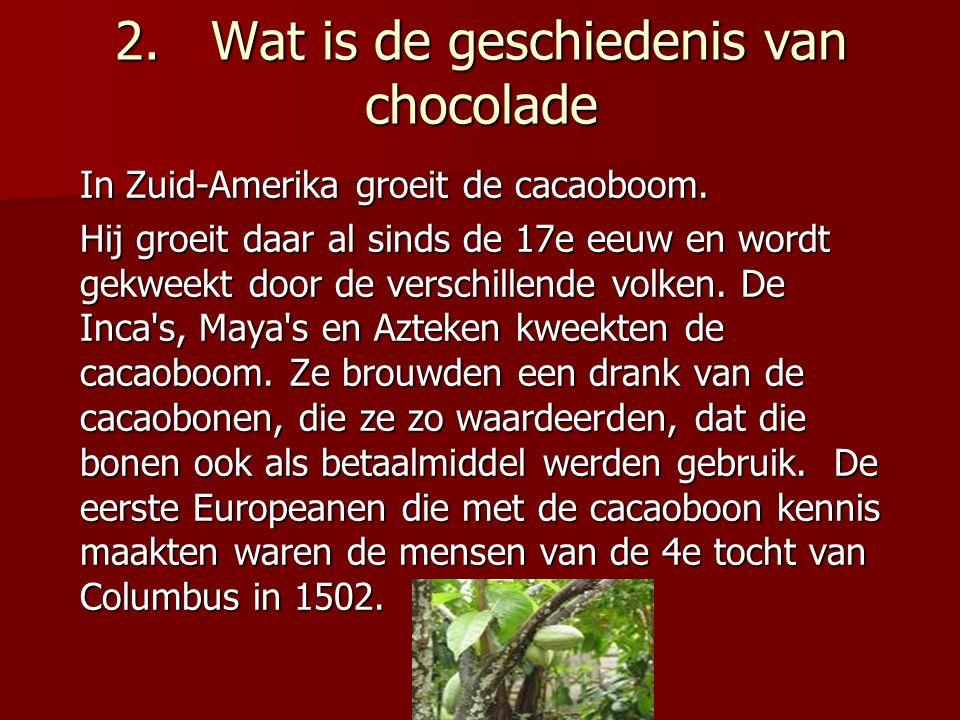 2.Wat is de geschiedenis van chocolade In Zuid-Amerika groeit de cacaoboom.
